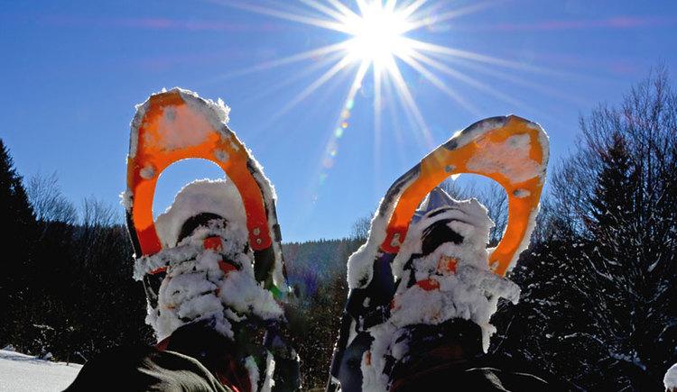 Geführte Schneeschuhwanderung. (© Herbert Benedik)