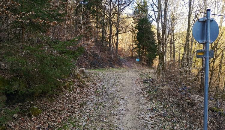 hier links gelangt man über Greifenberg und Oberweitersdorf zurück nach Alberndorf (A13)