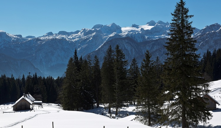The circuits of the high-altitude cross-country skiing trail Predigstuhl are easy to challenging and offer unique views of the Goiserer Valley to Lake Hallstatt and the Dachstein Massif.