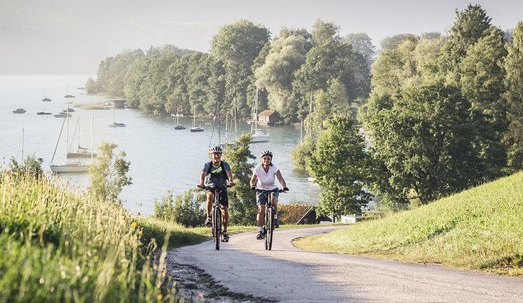 Radfahrer am Salzkammergut Radweg. (© Oberösterreich Tourismus GmbH/Moritz Ablinger)