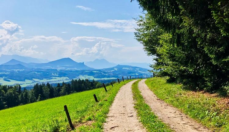 Blick Richtung Salzburg mit Gaisberg, Staufen und Untersberg (© Salzkammergut / Harald Maier)