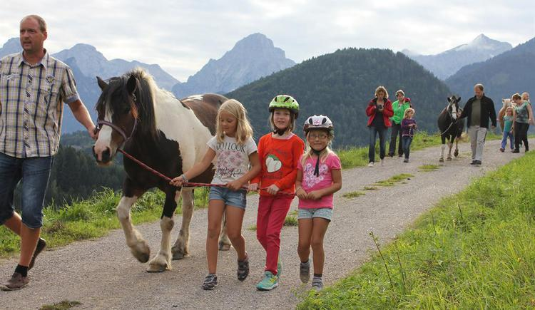 Pferde führen (© Klinser)