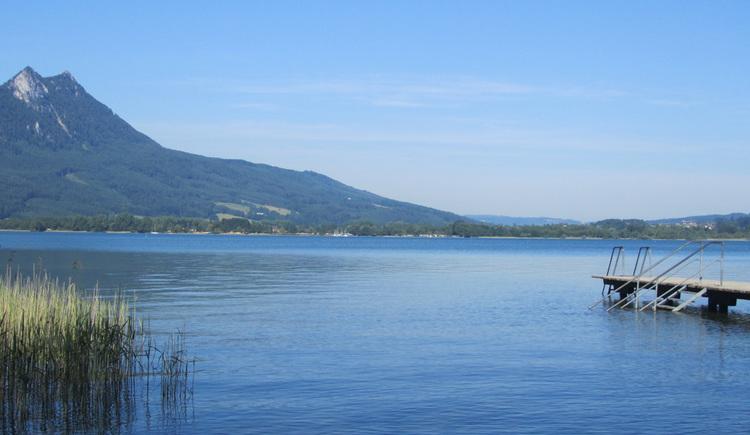 Blick auf den See, im Hintergrund die Berge. (© Tourismusverband MondSeeLand)
