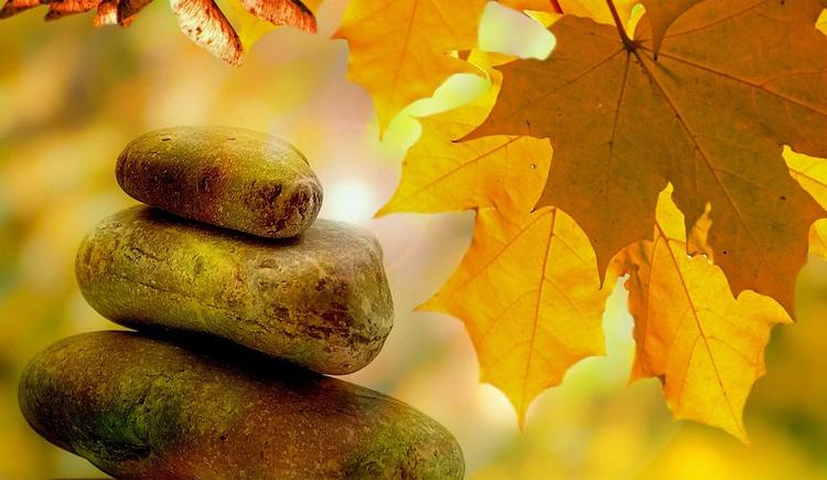Steine liegen aufeinander, seitlich Blätter. (© Akademie der Sinne)
