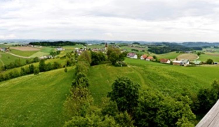 Panoramablick vom Aussichtsturm am Burgstall (© WGD Donau Oberösterreich Tourismus GmbH/Weissenbrunner)