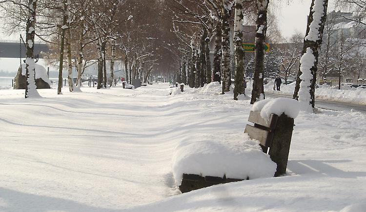 Winterstimmung in Aschach, Donaupromenade. (© Manfred Königstorfer)