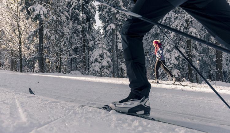 boehmerwald_muehlviertel_winter_schnee_paar_langlaufen_oberoesterreich-tourismus-gmbh_david-lugmayr-jpg-1 (© Muelviertel Tourismus)