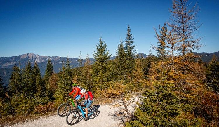 Alpines Gefühl kommt auf den kilometerlangen Mountainbikestrecken im Salzkammergut auf.