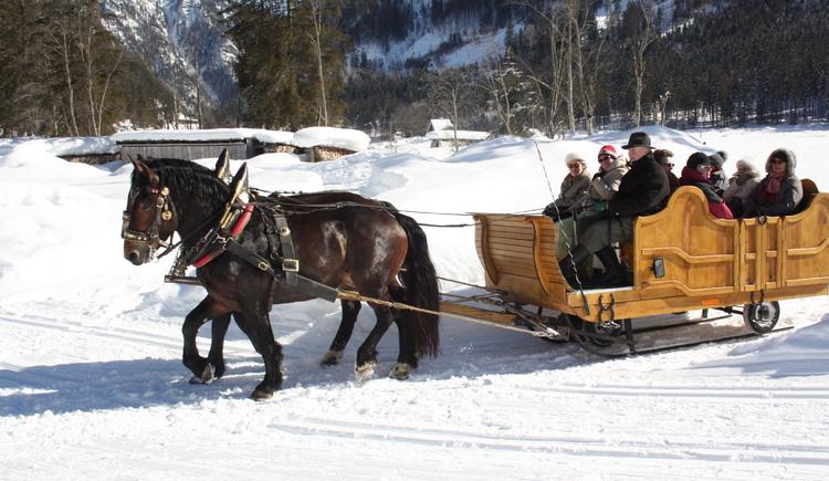 Pferdeschlittenfahrten durch das wunderschöne Gosautal.