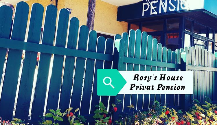 Au%c3%9fenansicht Sommer-Rosys House Privat Pension-Bad Goisern-Foto-Rosita De Santis