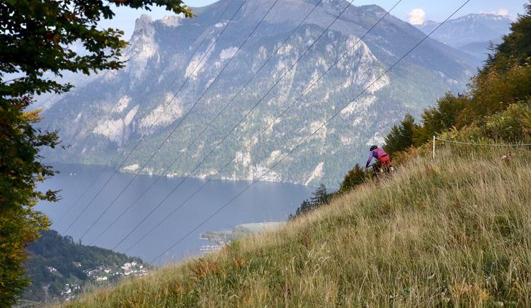 Einfahrt zum Lawinenhang mit Blick auf Ebensee und den Traunsee (© Verein 50grad.at)