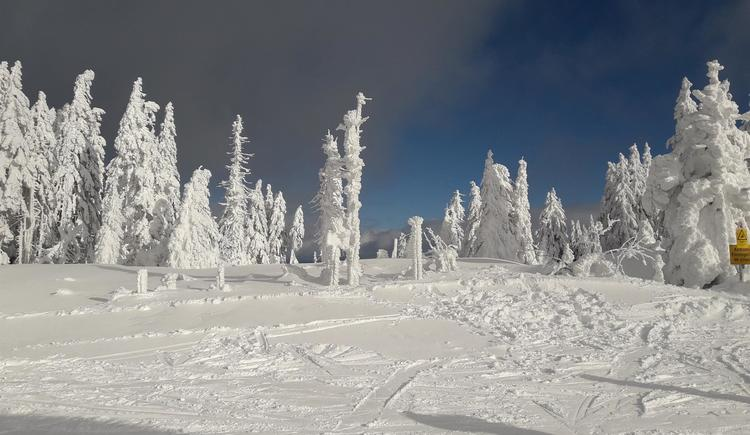 Landschaft im Winter/3 (© Privat)