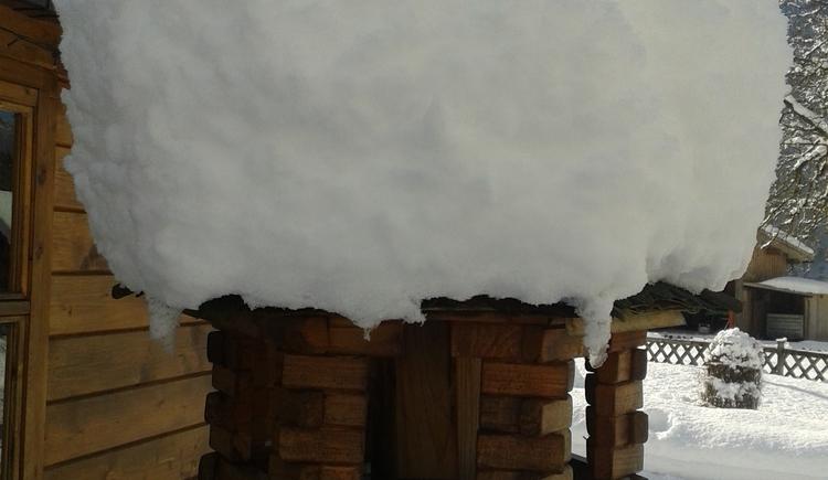 Vogelhäuschen ganz mit Schnee bedeckt. (© J. Lindemann)