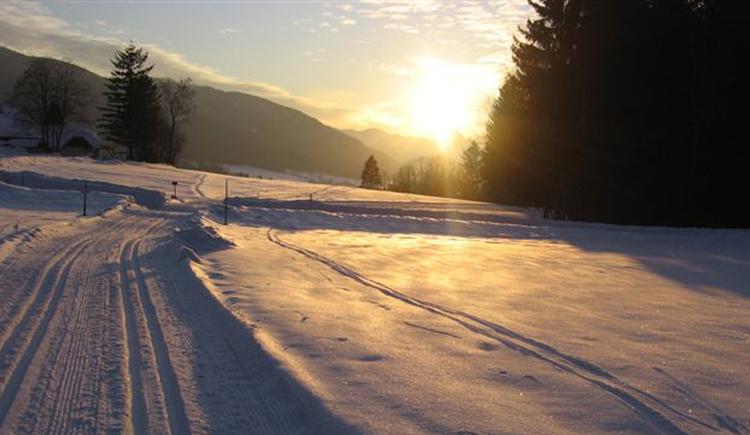 Langlaufloipe Nußdorf Oberwang mit Sonne. (© TVB Attersee-Attergau)