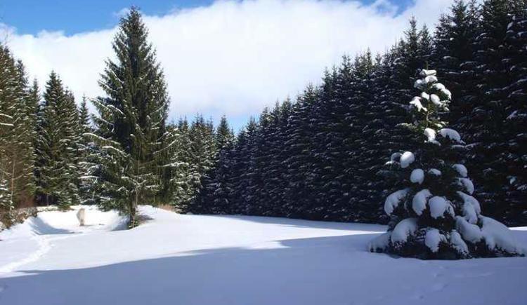 Außenansicht im Winter (© Privat)