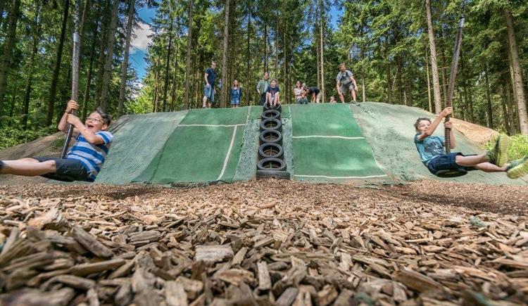 Riesenschaukel (© Baumkronenweg Kopfing, OÖ)