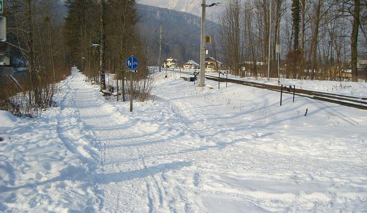 Traunreiterweg entlang der Traun von der Goiserer Brücke zur Weißenbach Brücke. (© Ferienregion Dachstein Salzkammergut)