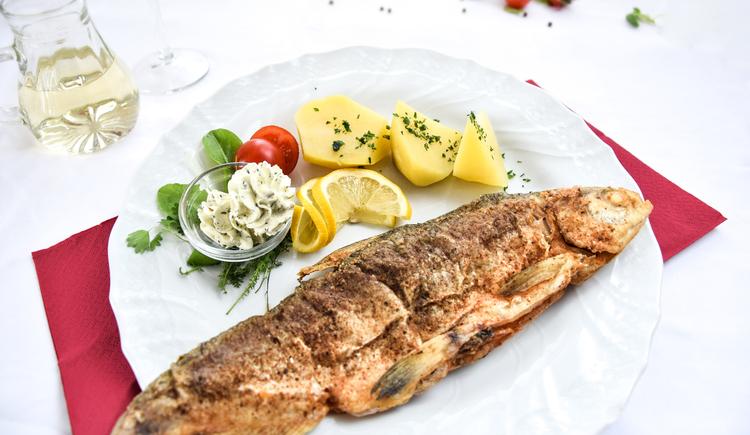 Donaufisch - Diese Fische werden lebendig in 3 dafür vorgesehenen Becken ganzjärig gehalten! (© Luger)