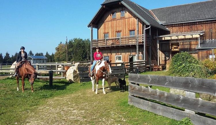 Hof mit Pferden (© Familie Schmalzer)