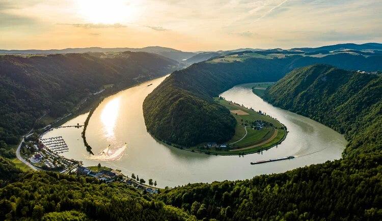 (© Donauschlinge Schlögen (c) WGD Donau Oberösterreich Tourismus GmbH_Kaindlstorfer)
