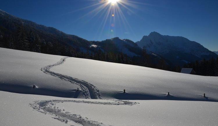schneeschuhwandern (26)