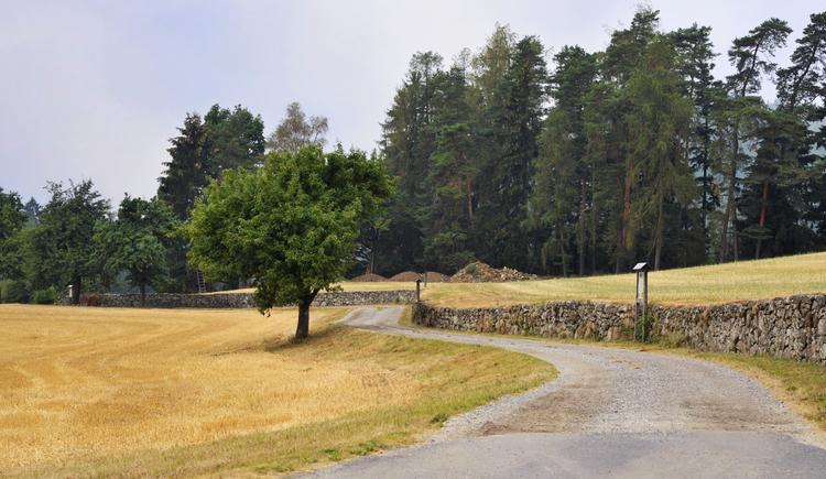 Trockensteinmauer mit Lehrpfad (© Johann Stadler)