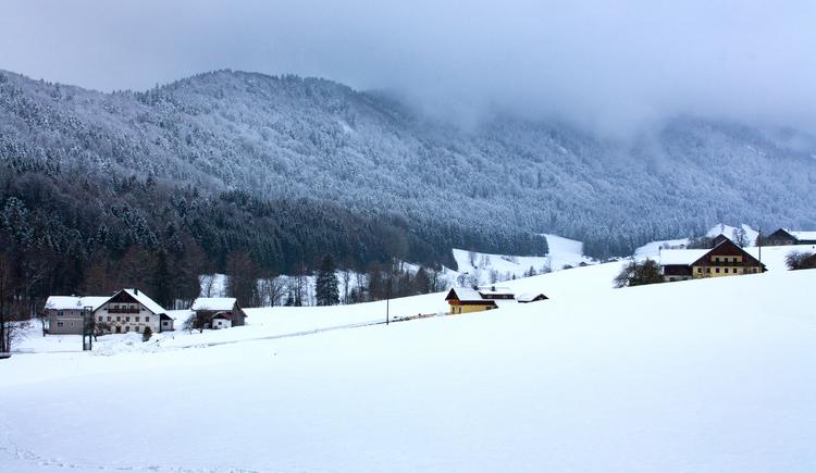 Winterlich verschneite Landschaft in Tiefgraben