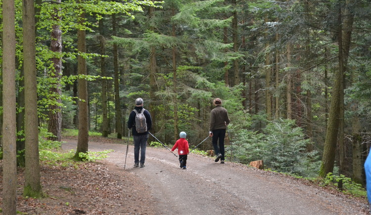 Wandern entlang des Adelsberg-Weges in der Bewegungs-Arena Mettmach und die abwechslungsreiche Landschaft des Innviertels genießen. (© Innviertel-Tourismus)