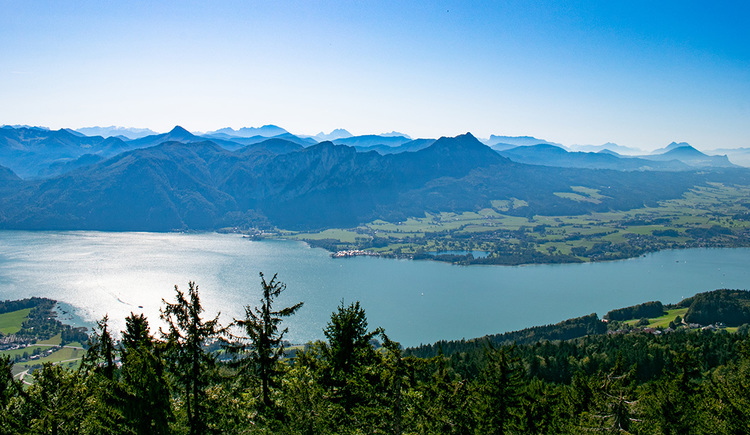 Der Aussichtsturm am Kulmspitz bietet Wanderern und Radfahrern ein traumhaftes Panorama. (© TVB Mondsee-Irrsee)