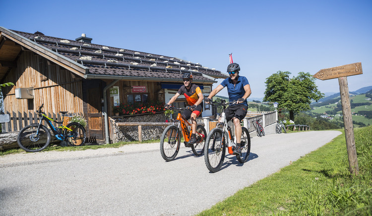 Mountainbiken (© KTM Dealer Datenbank)