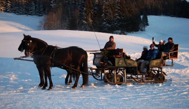 Pferdeschlittenfahrt in der Dämmerung (© Ausweger Josef)