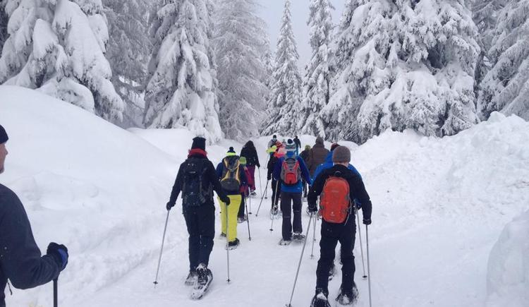 Schneeschuhtour im Böhmerwald