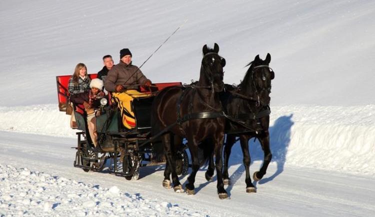Winterliche Pferdeschlittenfahrt (© Ausweger Josef)