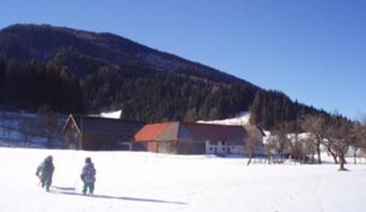 Unser Hof im Winter (© Schmidthaler)