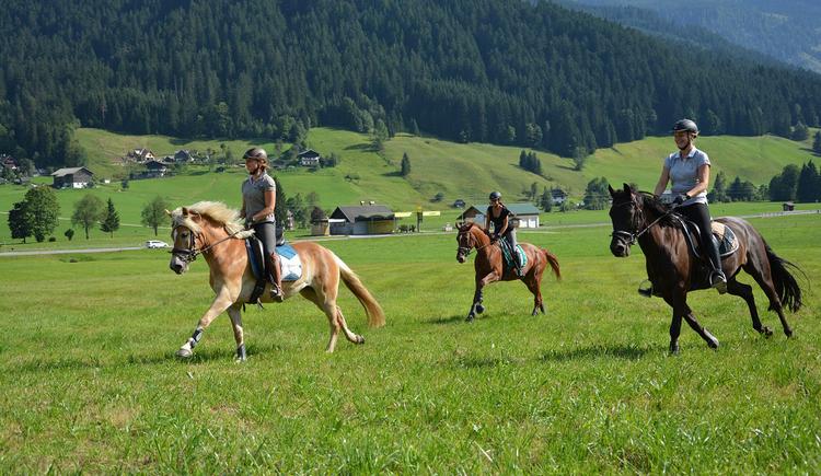 Ein Ausritt mit den Pferden in Gosau. (© Edith Reiter)