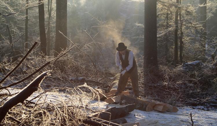 Zu sehen ist ein Mann bei der Waldarbeit im Winter. (© Alois Litzlbauer)
