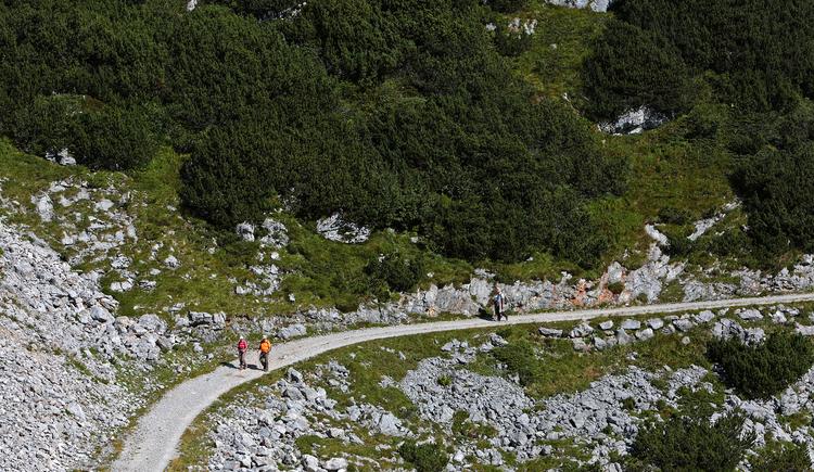 Viele Wanderer nutzen diesen familienfreundlichen Wanderweg für einen Ausflug. (© Viorel Munteanu)