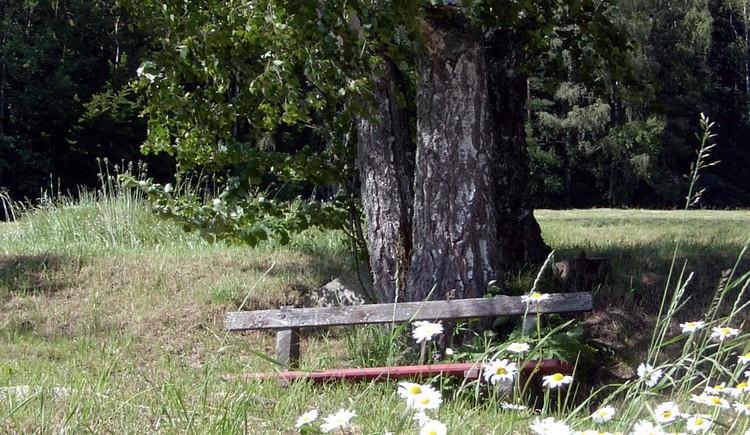 Weitersfelden Sommer (© Mühlviertler Alm)