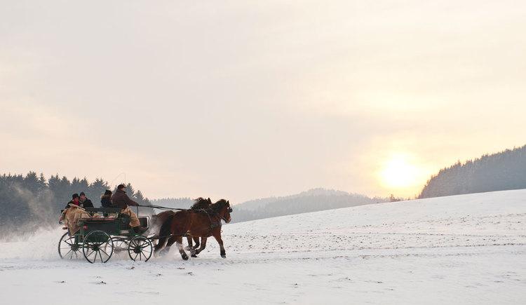 Kutschen- und Schlittenfahren im Winter (© Tourismusverband Mühlviertler Kernland/Erber)