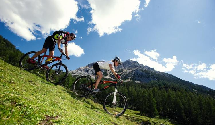 Mountainbiken (© Ö.Werbung Himsl)