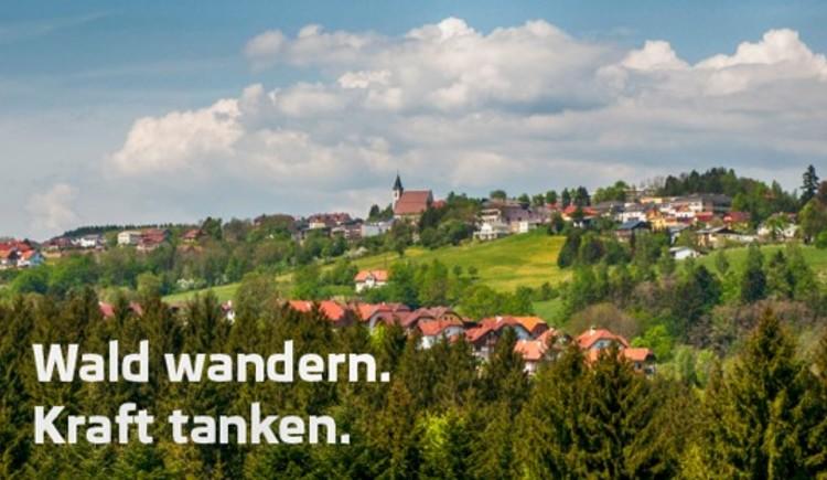 Bad Kreuzen (© Bruno Brandstetter)