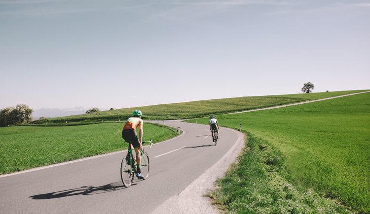 Rennradfahrer mit Ausblick auf die Alpen. (© Oberösterreich Tourismus GmbH/Stefan Mayerhofer)