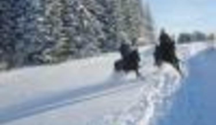 Reiter im Winter