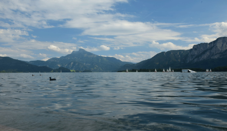 Lake view with mountains in the background. (© Familie Maier)