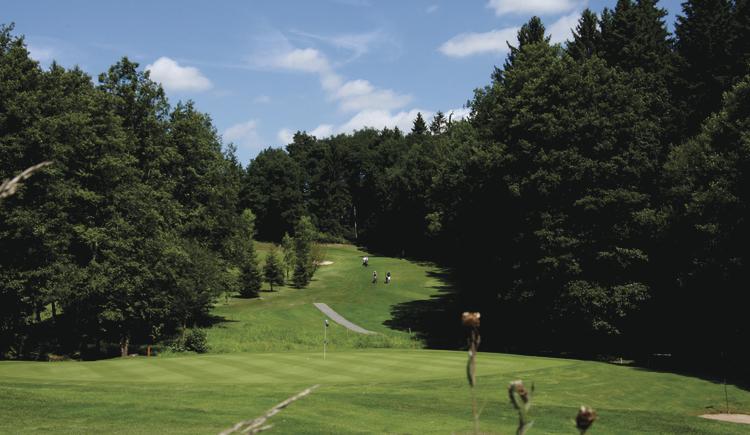 golfen-gr-n-11-2017-07-29-dmm-ak-50-herren-rl-s-d-035