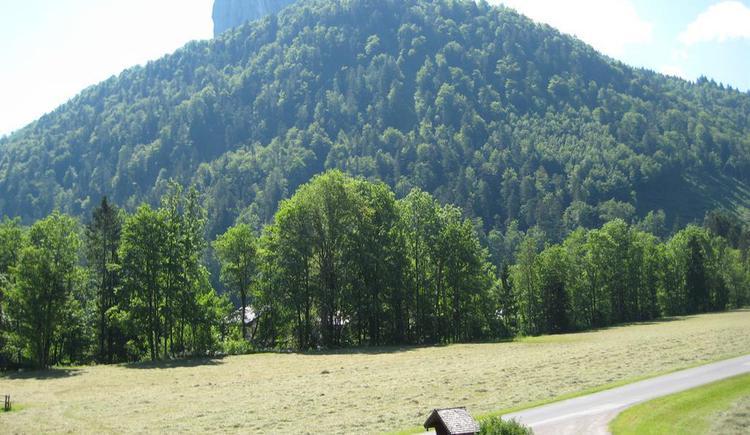 Aussicht vom Balkon039