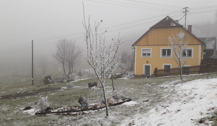Winterstimmung (© Bauer Christina)