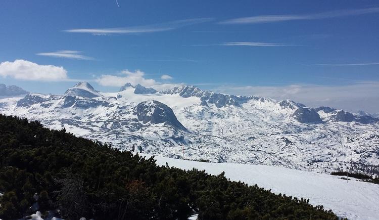 Wunderschöner Ausblick auf den schneebedeckten Dachstein. (© Johann Höll)