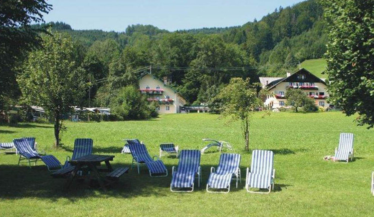 View from the bathing area with sun loungers, trees. (© Dittlbacher)