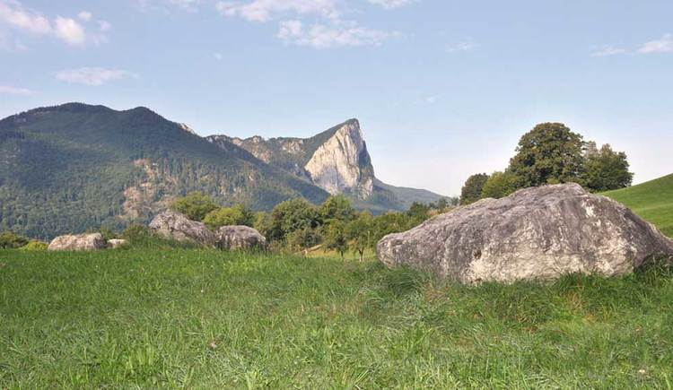 Blick auf die Drachenwand, im Vordergrund eine Wiese. (© www.mondsee.at)